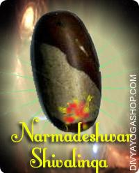 Narmadeshwer Shivalinga This Narmadeshwer Shivalinga charged by Rudra mantra. Lord Shiva represents the side of the Supreme Being and is considered to be the destroyer of evil and sorrow...