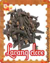 Lavang (clove) for Puja This Clove charged by Karya Siddhi mantra. it is beneficial for worship, Puja, Tantra Sadhana and health also...