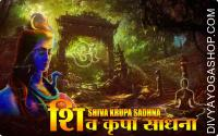 Shiva krupa sadhana for prosperity