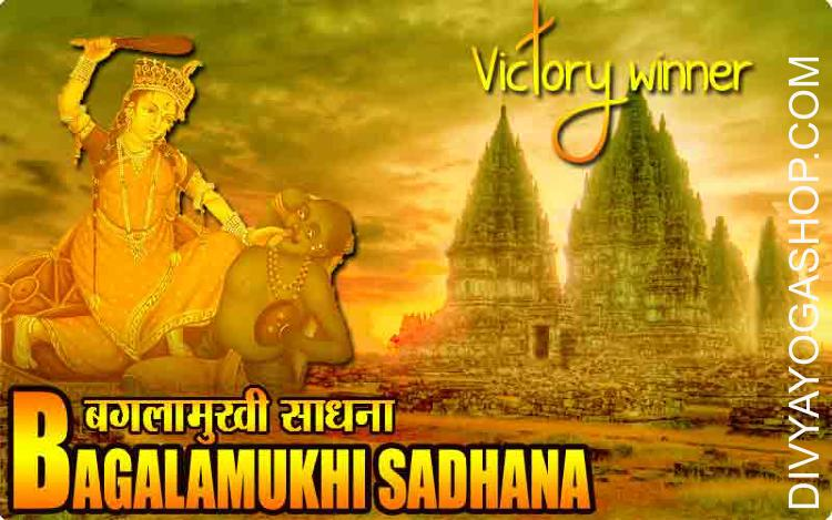 Victory winner Bagalamukhi sadhana The worship of Baglamukhi who is also famous as 'Pitambara Vidya' (yellow Colour is prominently used in her worship) for protection against the enemies and to defeat them, to get victory in the legal matters or court cases, to acquire wealth...