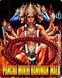 Panchmukhi hanuman rosary Panchamukhs Hanuman might be traced to a narrative in Ramayana. In the course of the conflict...