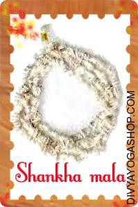 Conch (Shankha) Mala This Conch (Shankha) Mala charged by Mahalakshmi mantra. Conch (Shankha) Rosary are very lucky...