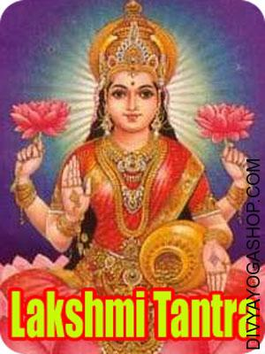 Lakshmi Tantra Sadhana for Windfall Positive aspects Wealth is the root of life and to earn it one tries each means. But many occasions even honest efforts fail to assist one win the favour of the Goddess of wealth, Lakshmi...