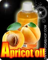 Apricote oil Apricote Oil is chilly-pressed from the dried seeds of the fruit of the apricot tree. This pure oil is gentle-coloured and...