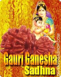 Gauri Ganesh Rudraksha Sadhana for Progeny Maata Gauri is the universal Mother. Blessings of Goddess Ambe Gauri are must for a wholesome Progeny. Those couples planning for a kid should perform this Sadhana on any auspicious day...