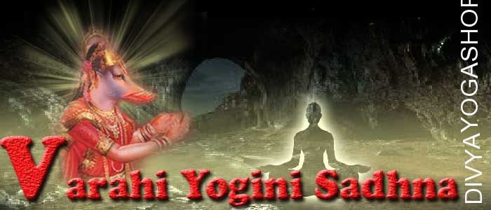 Varahi yogini sadhana Varahi yogini is one of from 64 yogini. She has supernatural abilities also she represent one of tantra from 64 tantras...