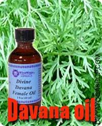 "Davana oil The well-known fragrant herb ""Davana"", is a plant of well being benefits. Aside from utilizing it within the hindu..."