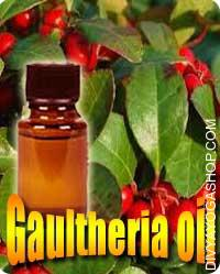Gaultheria oil Gaultheria varieties salicylate is current predominantly as a conjugate of methyl salicylate and glucose known...
