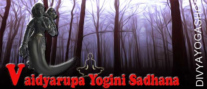 Vaidyaroopa yogini sadhana Vaidyaroopa yogini is one of from 64 yogini. She has supernatural abilities. Vaidyaroopa yogini represent one of tantra from...
