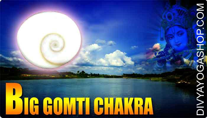 Big gomti chakra This Big gomti chakra is charged by sudarshan mantra. This big Gomti Chakra is known as a atypical natural and religious product, a form of shell stone. Gomti Chakra is located in gomti River in Dwarka..