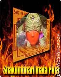 "Shakumbhri Devi yantra ""Jai Maa Shakumbari Devi."" This mandir is taken into account to be the Mata who gives Vegetarian Meals to..."