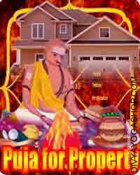 Puja for property