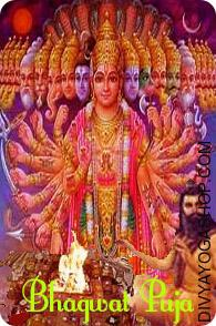 Bhagawat Puja The Shrimad-devi Bhagwat and Shri Durgasaptshati mentions the importance of puja accomplished through the Navratri. Devi Mahaatmya and other texts invoking Goddess Durga are cited during their period of nine days...