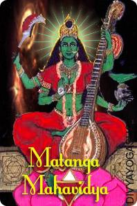 Mahavidya Matangi Puja Maata Matangi maintains the ninth significant place amongst all the ten Mahavidyas. Maata Matangi is a ferocious facet of Devi carrying darkish complexion. Maata Matangi is lavishly elegant and refined with extreme beauty...