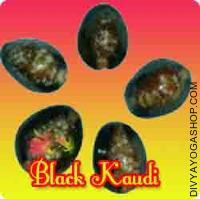 Black Kaudi or Kali Kaudi for removing negative energy