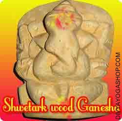 Shwetark ganesha idol for success in task This Swetark Ganesha idol charged by Panchamukhi ganesha mantra. It's believed that those that worship this idol of Ganesha benefit from the presence of Goddess Laxmi and Lord Shiva...