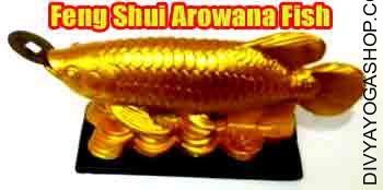 Feng Shui Arowana Fish The fish image has lengthy been related to profusion and wealth in feng shui, thus there are lots of cures that depict fish for prosperity...