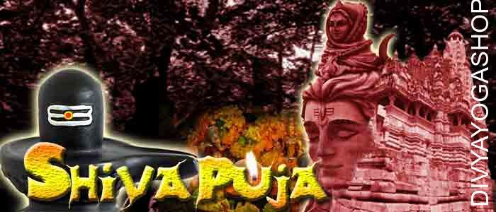 Shiva puja Lord shiva will often be shown with lots of images, as inventor, destructive force and preserver simultaneously authority of the universe. He contains equally good and bad