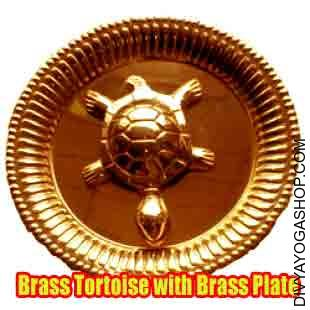Brass Tortoise with Brass Plate Feng Shui has confirmed itself as a vital information to life to its many believers and practitioners..
