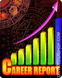 Career report