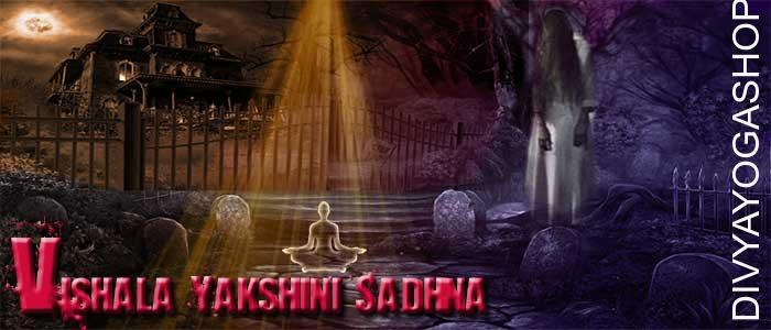 Vishala yakshini sadhana for success Vishala yakshini is considered to be rapid success in wealth and profession. But this yakshini sadhana is only for experienced devotees (Sadhak). A Sadhak is success