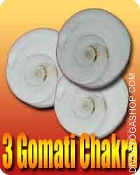 3 Gomti chakra for protection