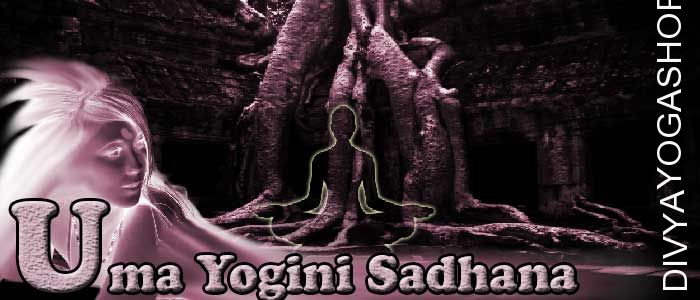 Uma yogini sadhana Uma yogini is one of from 64 yogini. She has supernatural abilities. Uma yogini represent one of tantra from 64 tantras...