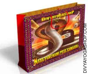Puja samagri for nag panchami Nag Panchami pageant of snakes is widely known on the fifth day of the moonlit fortnight within the month of...