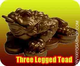 Three Legged Toad Three legged cash frog also called the three legged toad or Chan Chu in Chinese might be probably the most favorable image..