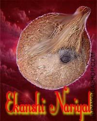 Ekanshi Nariyal This Ekanshi Nariyal charged by Ashta-lakshmi mantra which is beneficial for good luck, wealth, success in business. Many of the coconuts carry one mouth and two eyes...