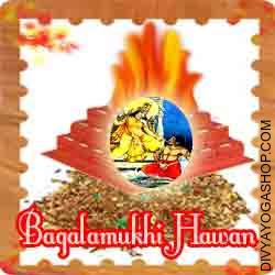 Bagalamukhi hawan samagri This Bagalamukhi Havan Samidha is charged by Bagalamukhi mantra. Every Tuesday you can also provide Ahuti 108 time by this Bagalamukhi havan Samagri for protection from enemy...