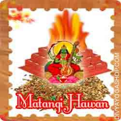 Matangi hawan samagri This Matangi Havan Samidha is charged by  Matangi mantra. Every Tuesday, Krishna Paksha Tryodashi you can also provide Ahuti 108 time by this Matangi havan Samagri for supernatural powers, especially gaining control over enemies, Death of spouse...