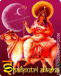 Shailputri diksha Navaratri Pooja (Navratri Pujan) earlier than the primary day of Durga is worshiped as a mom shailaputree...
