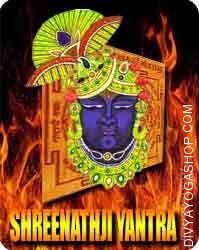 Shree nath sudarshan yantra