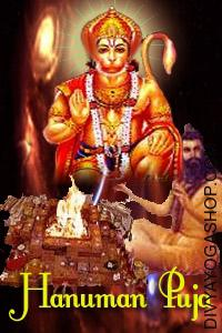 Hanuman Puja Hanuman Puja (Kesri Nandan) is understood to be the incarnation of Lord Shiva. It's believed that when Lord Vishnu took start, in the type of Ram to fade, the best demon king Ravan, the other Gods additionally born in monkey and bear races to assist him...