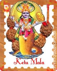 Ketu mala This Ketu mala charged by Ketu mantra.  Ketu mala is to appease the planet ketu. When ketu is adversarial in a horoscope it's difficult to attain success Ketu yantra is utilized in such situations...