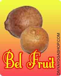 Bel fal (Fruit) for puja This Bel fruit is charged by lord Shiva mantra. This Bel fruit  is used in Shiv Puja....