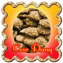 Cow-Dung.jpg