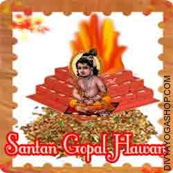 Santan gopal puja hawan samagri This Santan Gopal Havan Samidha is charged by  Moon mantra. Kids are nature's gift for the happiness of a family. For a childless couple life is nothing greater than a hell as there is nothing appears interesting and exciting without the...