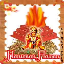 Hanuman puja hawan samagri This Hanuman Havan Samidha is charged by Hanuman mantra. Every Tuesday, Saturday you can also provide Ahuti 108 time by this Hanuman havan Samagri for cures all illness and gives courage to fight the illness...