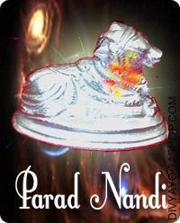 Parad Nandi This Parad Nandi charged by Panchmukhi Shiva mantra.  This Parad Nandi is product of mercury and silver and may be very strong and heavy. It's a rare tantric article...