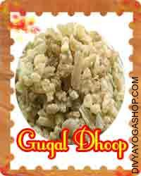 Gugal dhoop for pooja This  Guggal Dhoop charged by Rudra mantra. Guggal Dhoop clean each and every part of your home. This Siddha Guggal Dhoop helps to remove negative energy and spiritual clean your house...