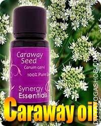 Caraway (Carum Carvi) oil