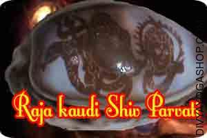 Raja Kaudi (Sea Shell) Carved Shiva-Parvati This Raja Kaudi (Sea Shell) Carved dancing Shiva-Parvati  energised by Gauri-Shankar mantra. It is beneficial for family peace...