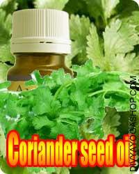 Coriander Seed (Coriandrum Sativum) oil