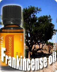 Frankincense (Boswellia Glabra) oil Frankincense Oil is extracted from gum or resin of the Olibanum tree; Boswellia Carteri or Boswellia Serrata, relying...