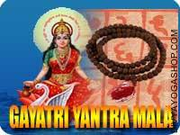 Gayatri yantra mala for prosperity This Gayatri Yantra and rosary energized by Gayatri Mantra. It gives you free and save life, giving you...