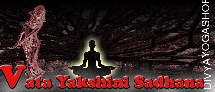 Vata yakshini sadhana Vata yakshini is a form of Pret-yoni. She has supernatural abilities. By doing Vata yakshini sadhana, devotee get benefits...