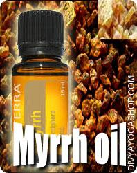 Myrrh (Balsamodendron Myrrha) oil Myrrh is a sap-like substance (resin) that arrives out of cuts within the bark of timber which may be members of...