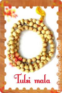 Tulsi Mala This Tulsi mala  charged by Krishna mantra. Tulsi Mala has been confirmed to be an amazing natural healer...